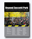 Beyond Zuccotti Park book cover